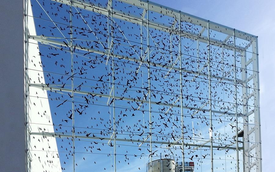 Dekorfolie für Fenster und Glasflächen
